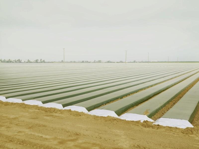 agriculture-moderne-02