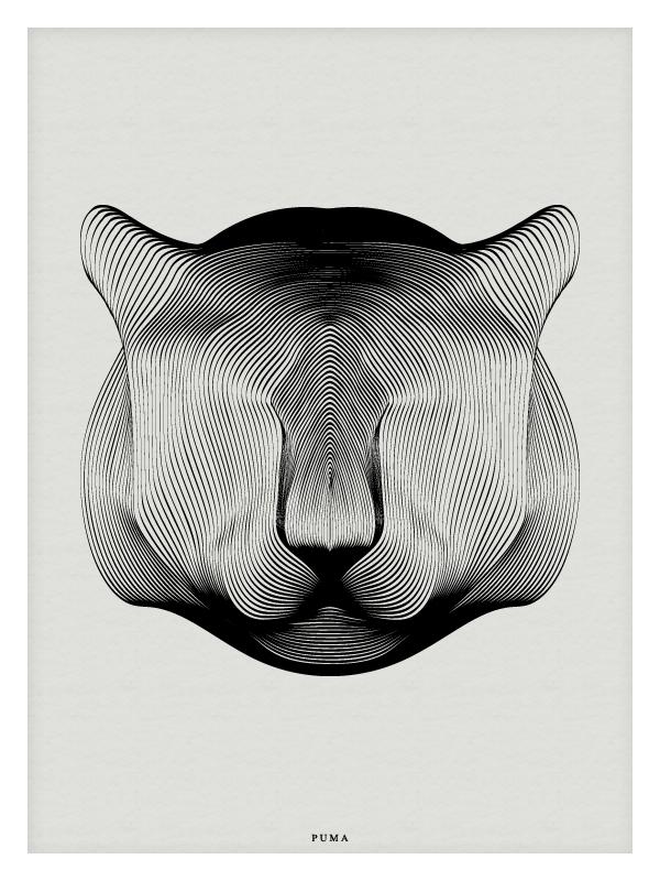 animal-moire-02