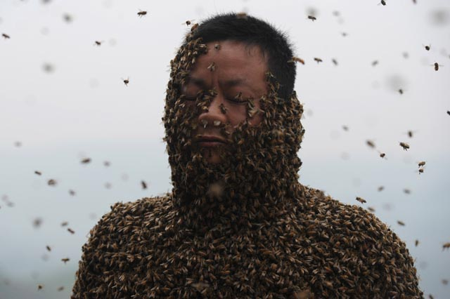 TOPSHOTS-CHINA-PEOPLE-BEE WEARING