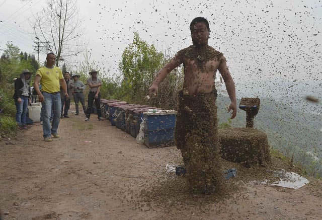 She shakes off bees after an attempt to cover his body with bees in Chongqing municipality