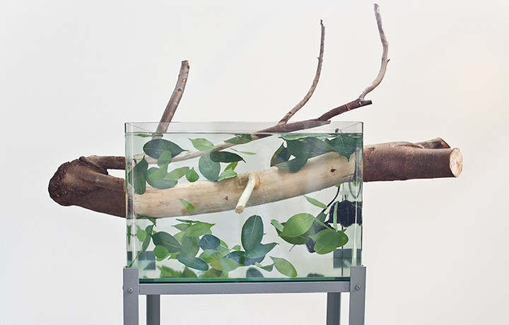 Branche-image-2-web