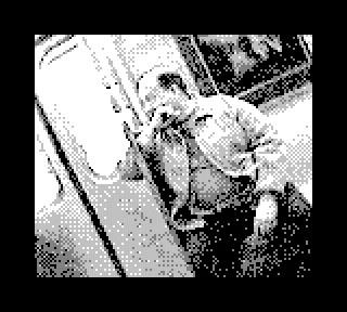 game-boy-camera-photo-new-york-08