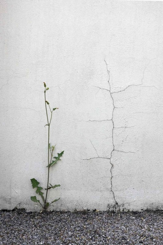 photo-rue-geometrie-04