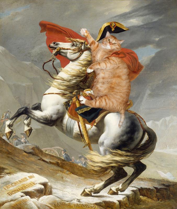 gros-chat-art-16