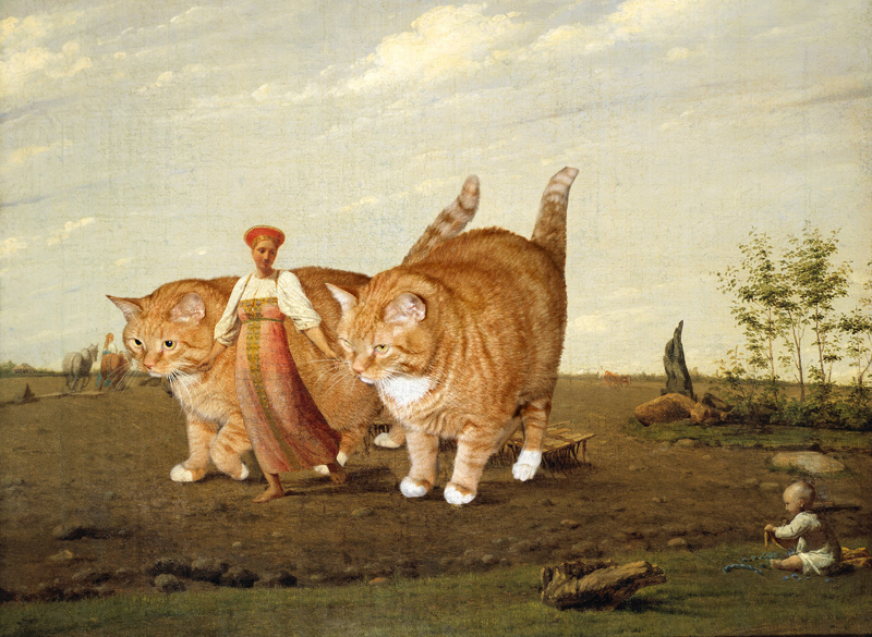 gros-chat-art-17