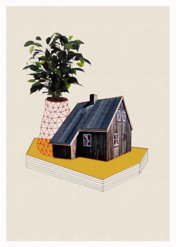 maison-plante-01