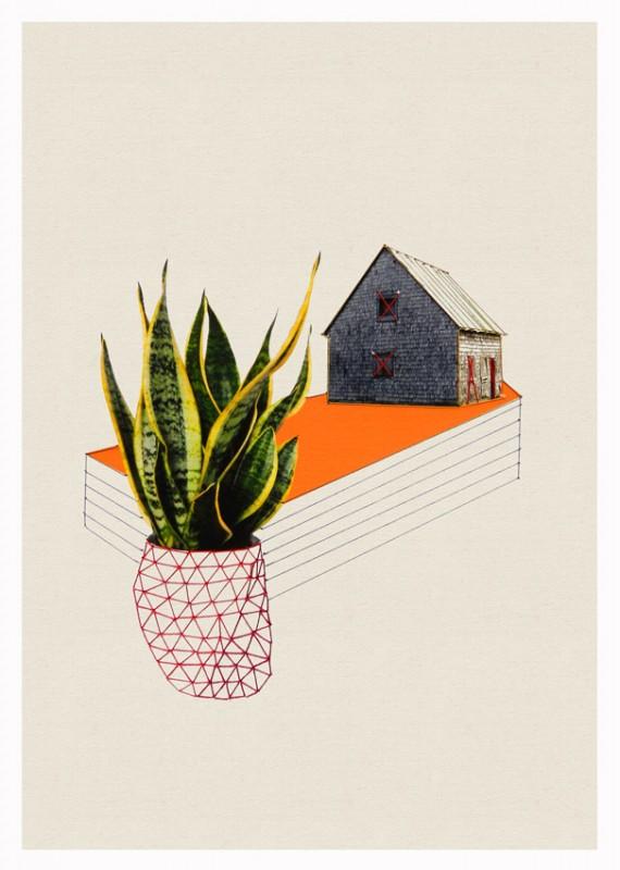 maison-plante-03