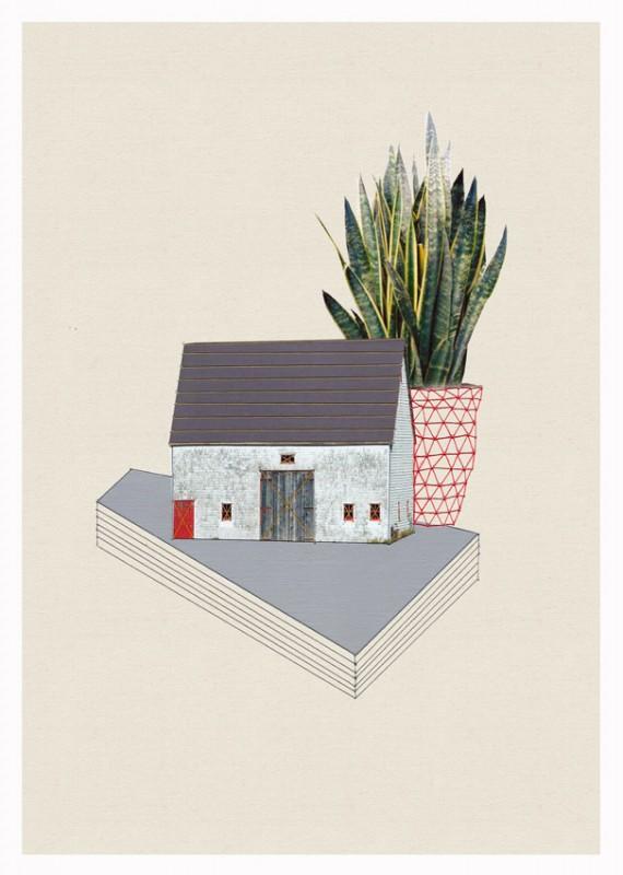 maison-plante-04
