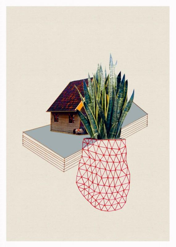 Maisons et plantes en collages - Plante citronnelle maison ...
