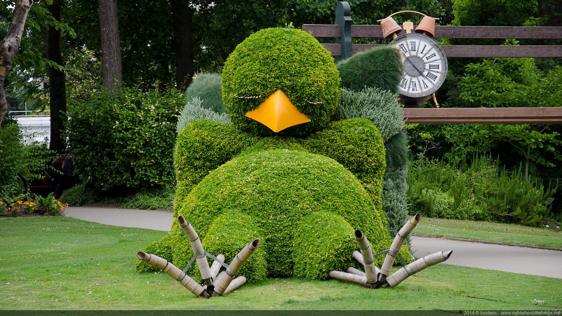 poussin-buis-nantes-jardin-plante-03 - La boite verte