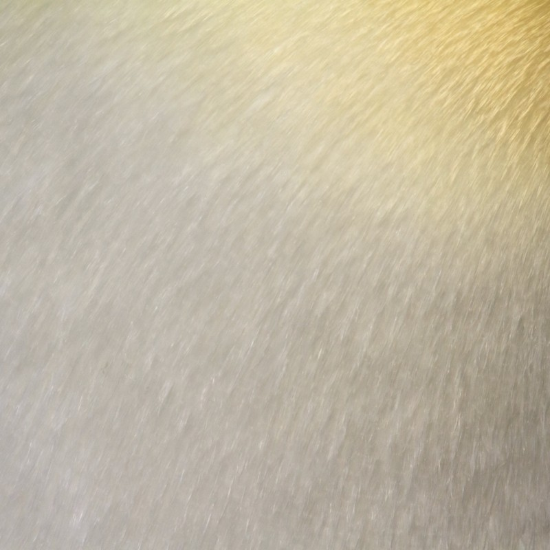 texture-peau-poil-plume-animal-04
