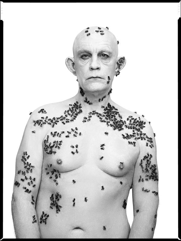 Richard Avedon / Ronald Fisher, Beekeeper, Davis, California, May 9 (1981), 2014