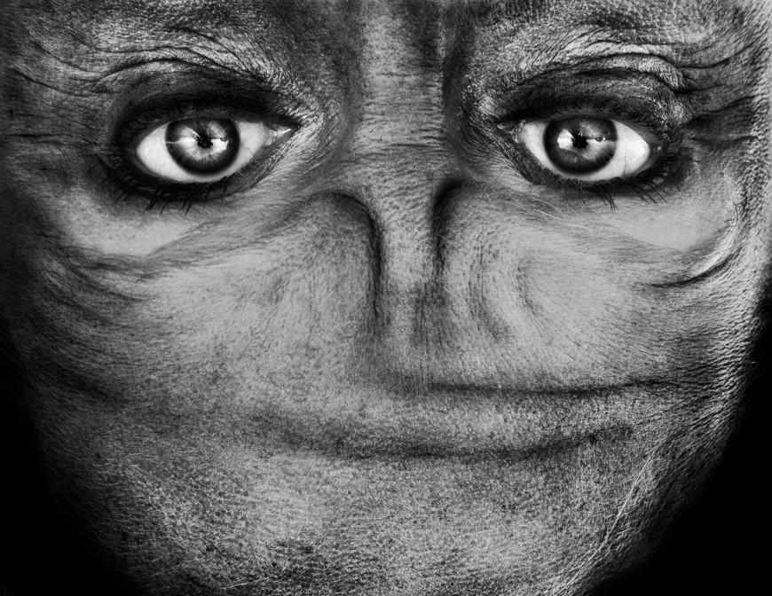 ride-visage-retourne-alien-10