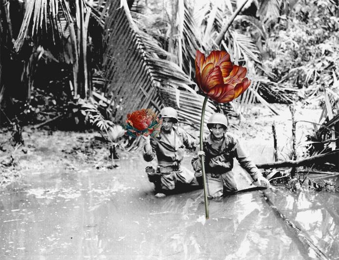 blik-photo-guerre-arme-fleur-04