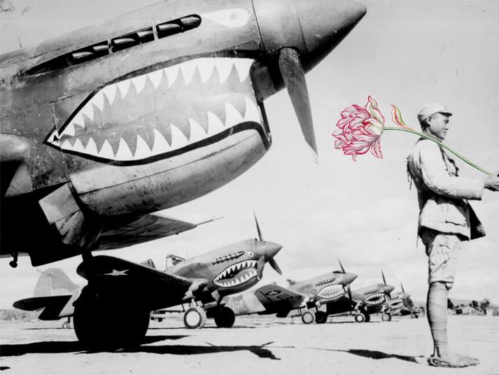 blik-photo-guerre-arme-fleur-05