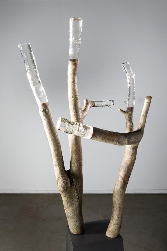 bois-pierre-resine-13