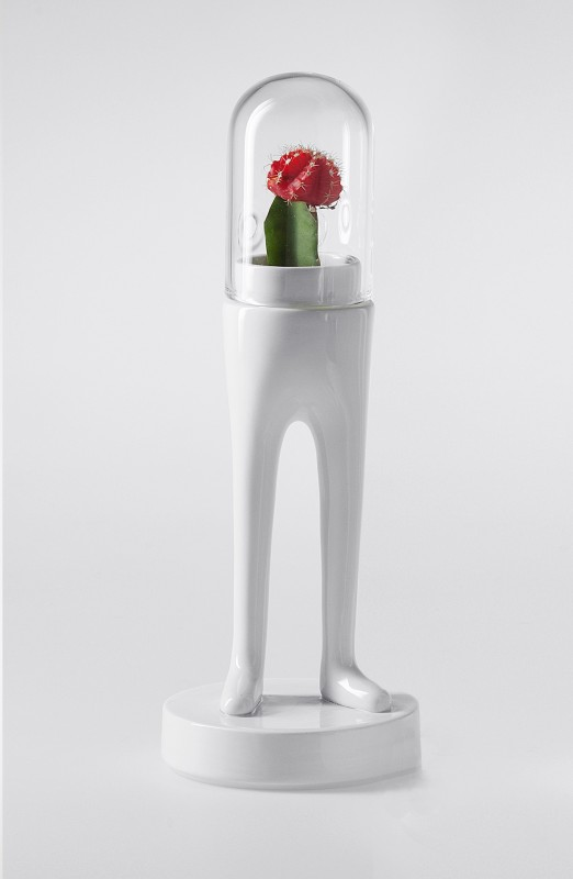 domsai-pied-cactus-05
