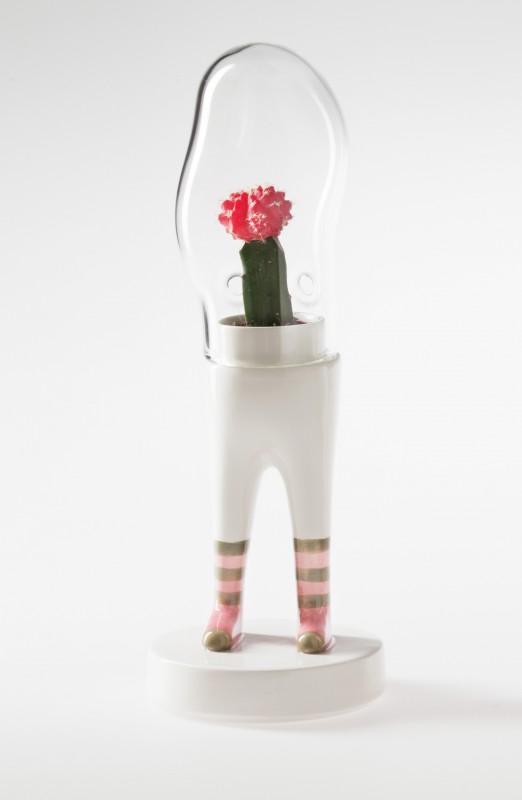domsai-pied-cactus-06