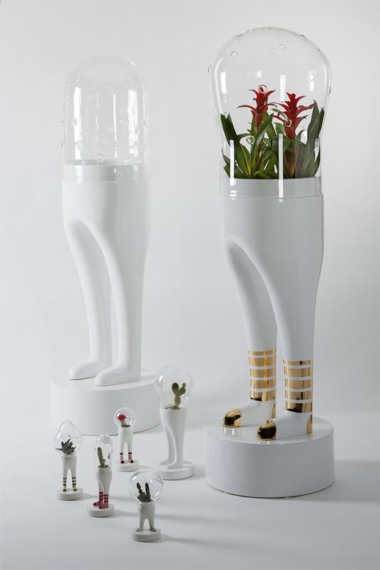 domsai-pied-cactus-07