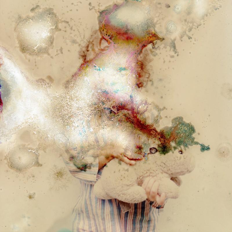 photo-champignon-microbe-03