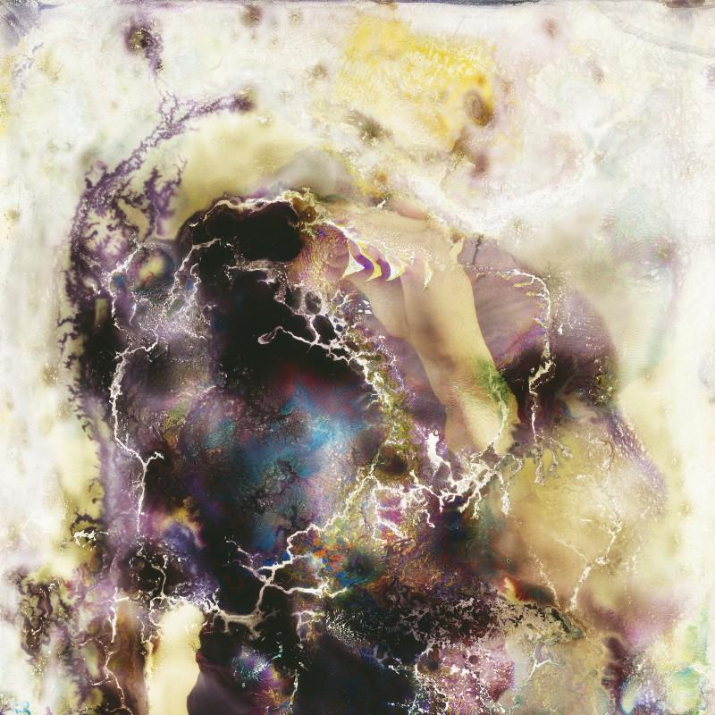 photo-champignon-microbe-07