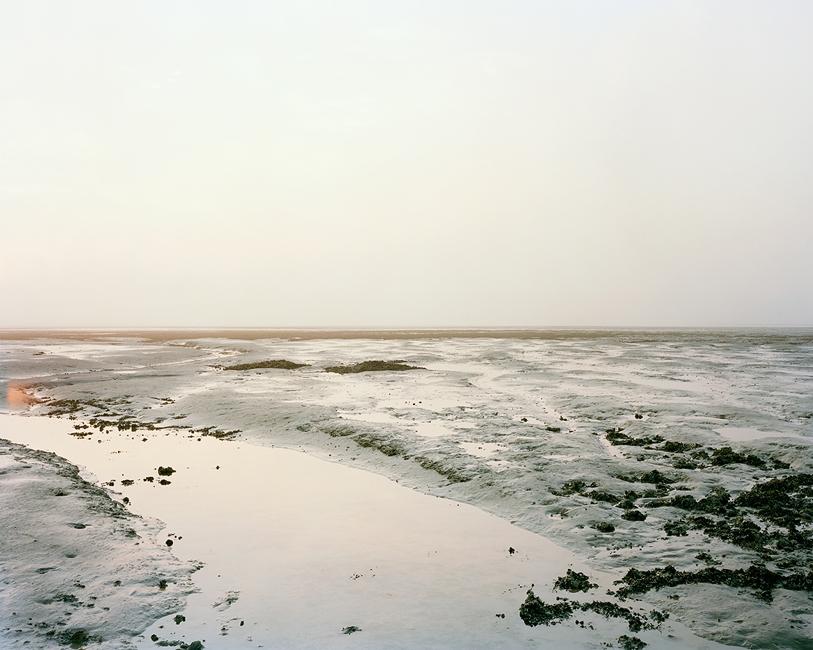tamise-estuaire-01