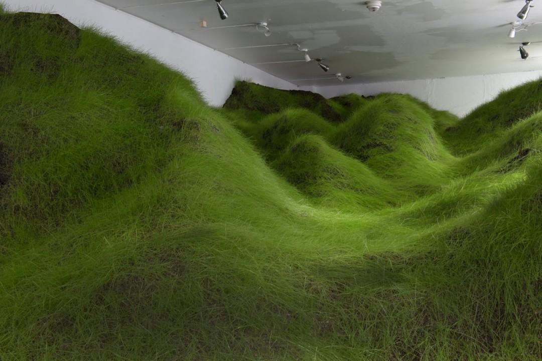 coline-verte-gallerie-03