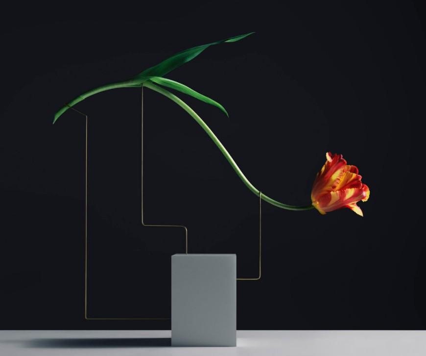 posture-tulipe-01