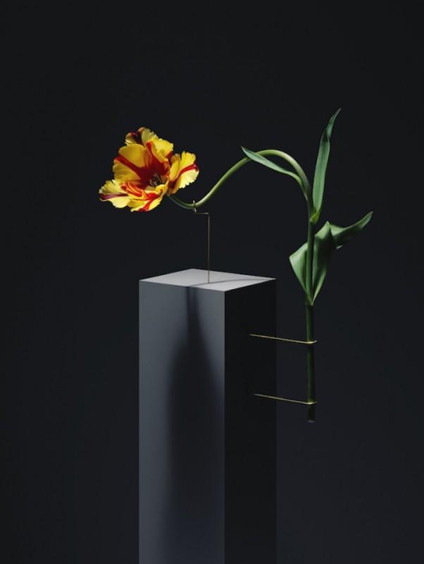 posture-tulipe-03