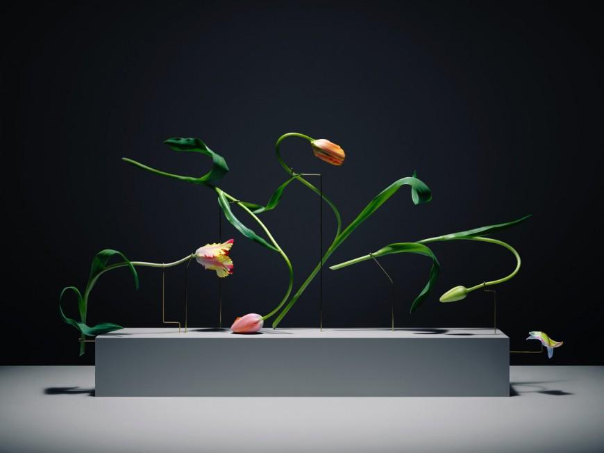 posture-tulipe-05