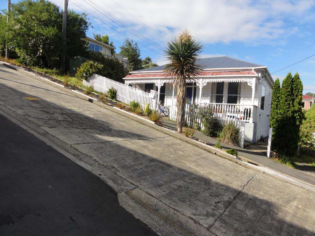 Baldwin-Street-rue-pente-record-nouvelle-zelande-04