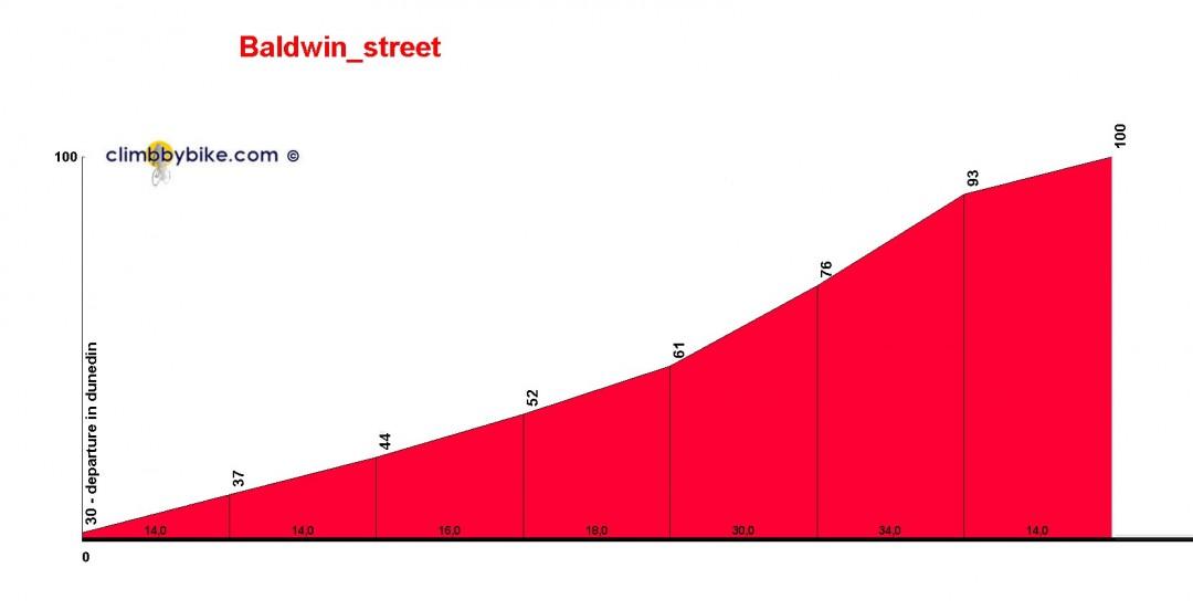 Baldwin-Street-rue-pente-record-nouvelle-zelande-05