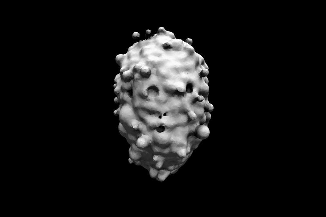 algorithme-visage-02