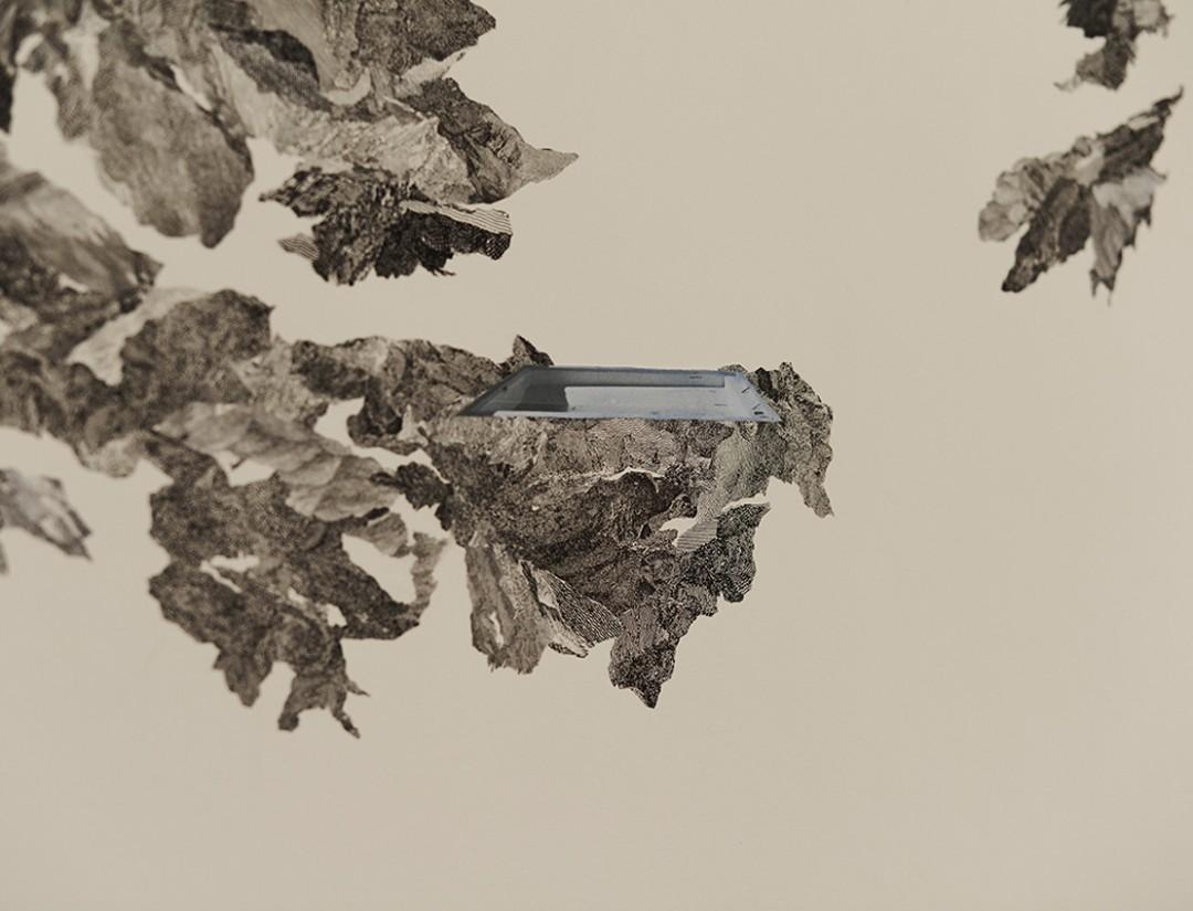 claire-trotignon-09