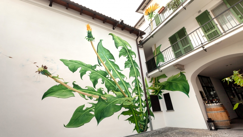 fleur-street-art-03