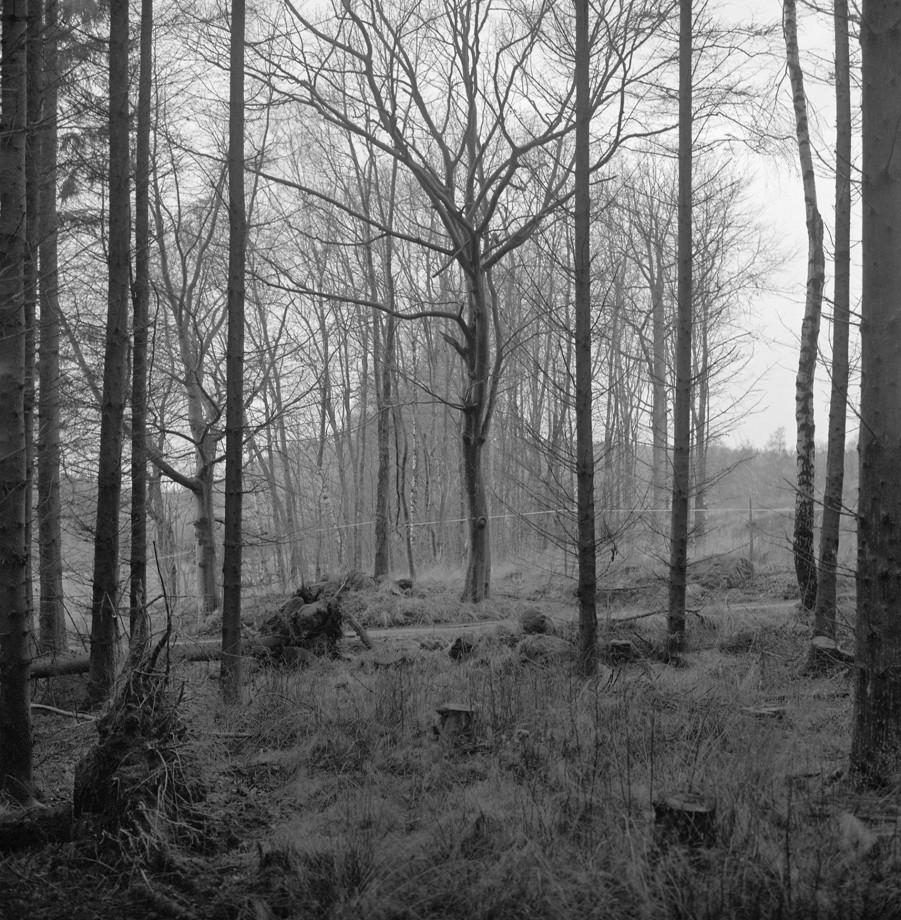 noir-blanc-carre-johansson-gerry-05