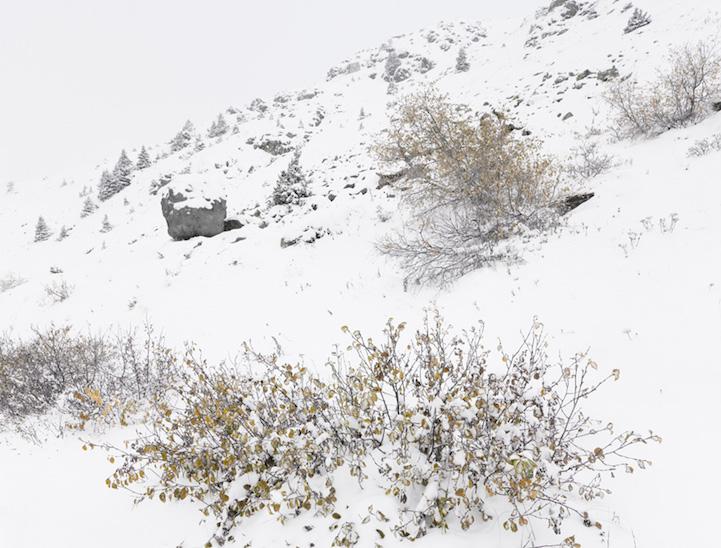 rocheralpe-suisse-cabane-06