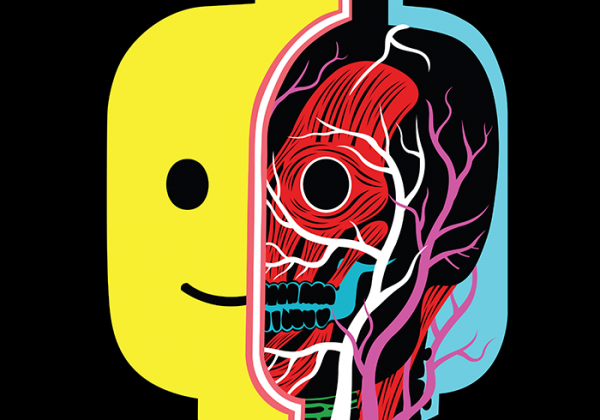 anatomie-illustration-01
