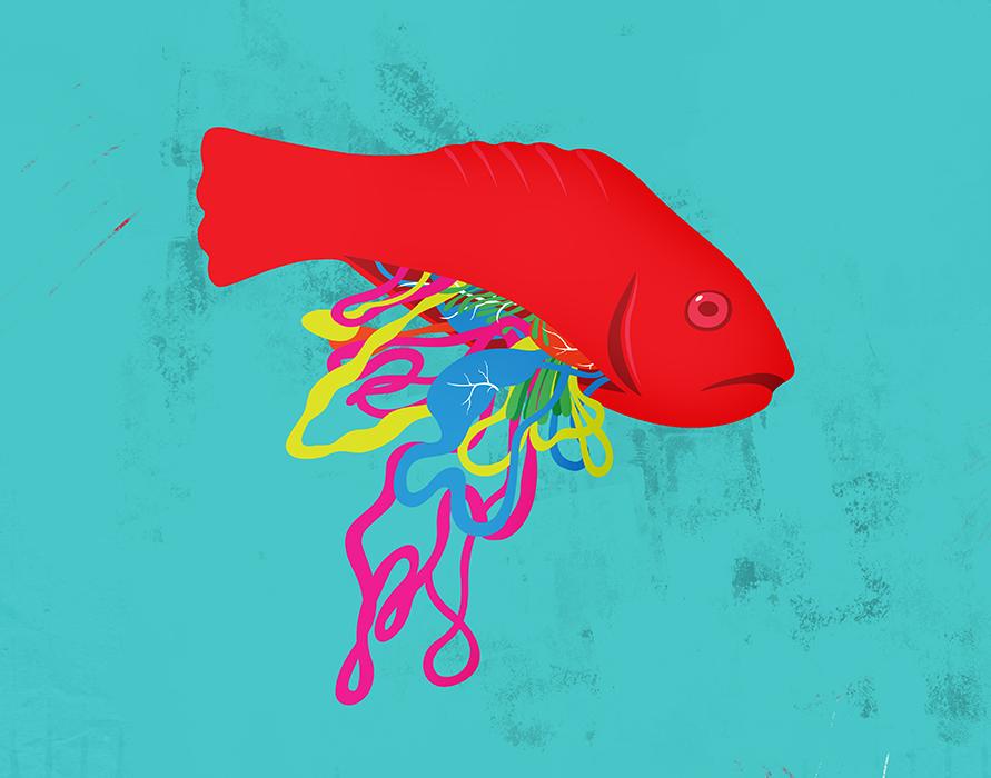 anatomie-illustration-05