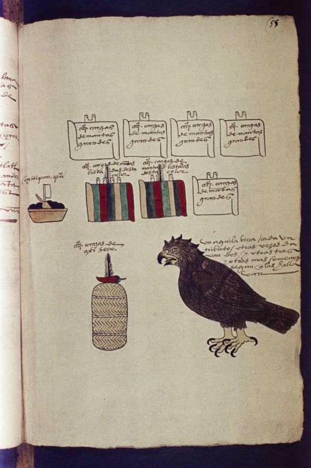codex-mendoza-aztek-24