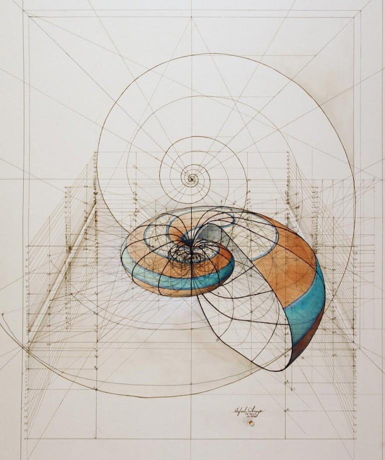 dessin-papillon-coquillage-03