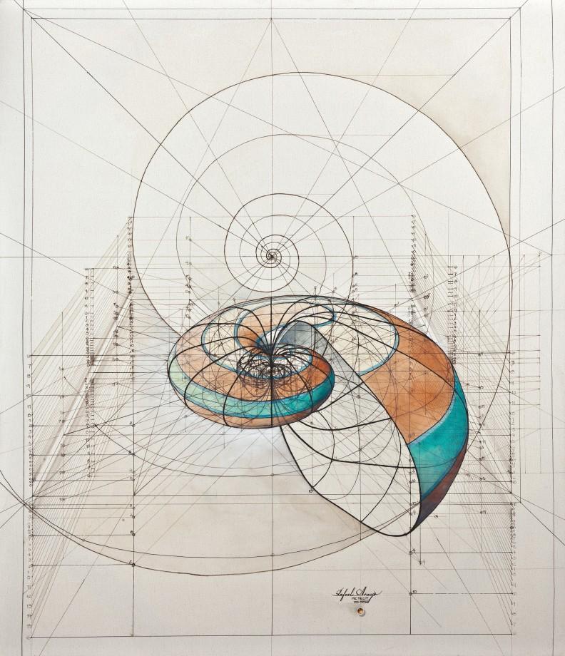 dessin-papillon-coquillage-10