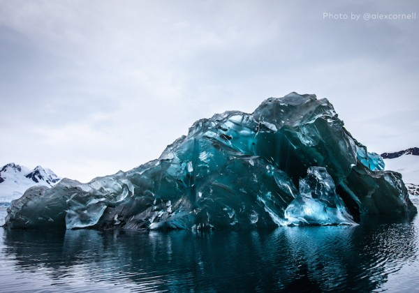 iceberg-dessous-01