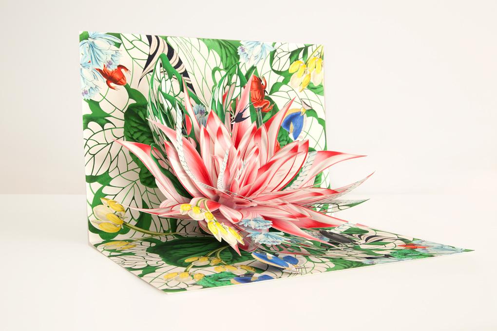 livre-popup-fleur-02