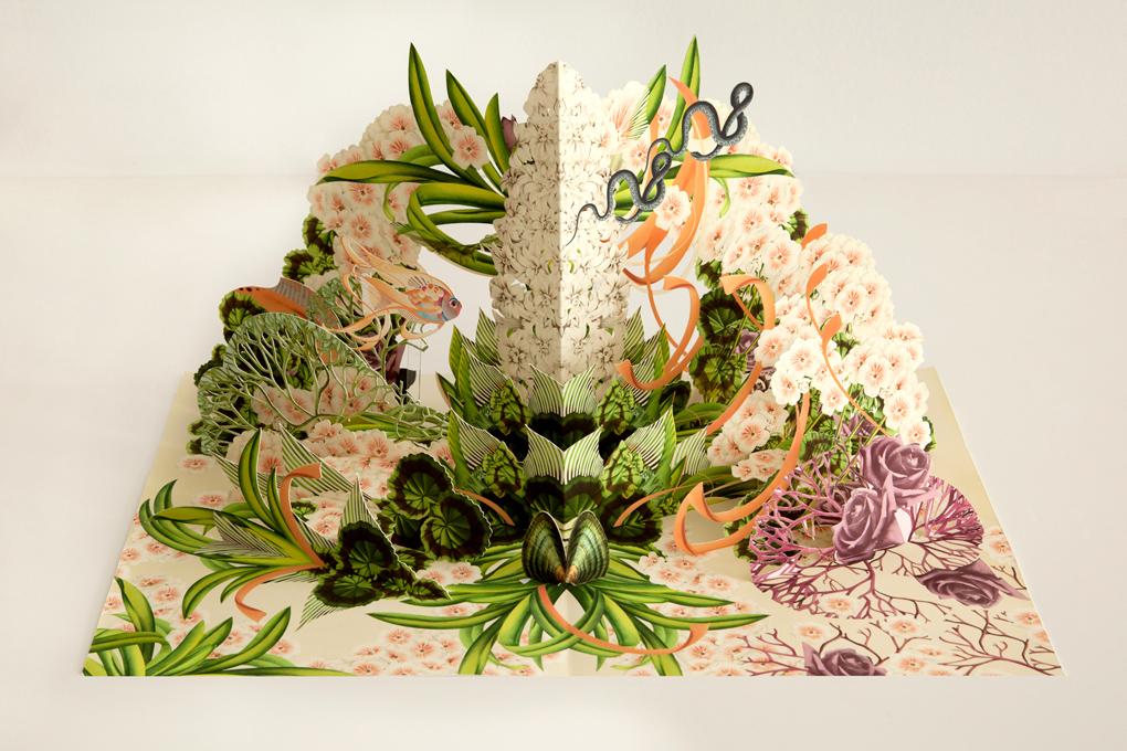 livre-popup-fleur-04