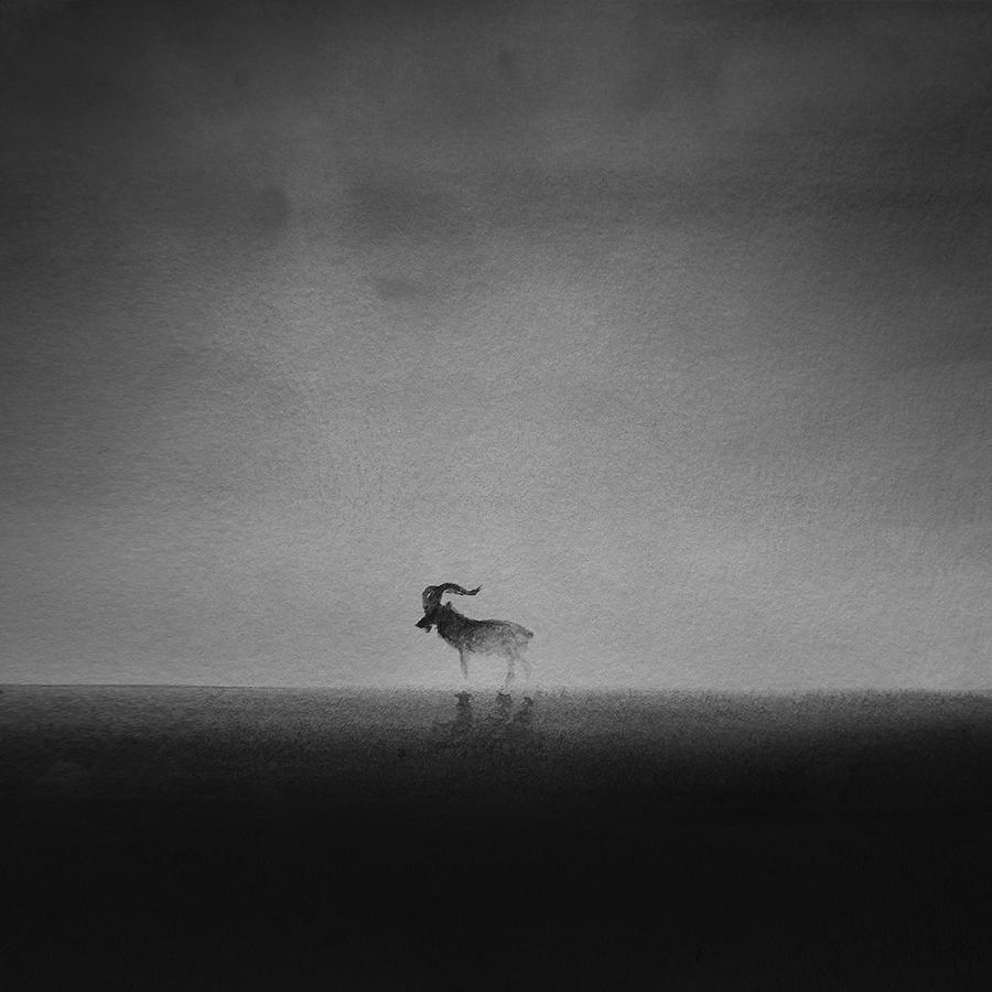 peinture-nb-enfant-animal-06