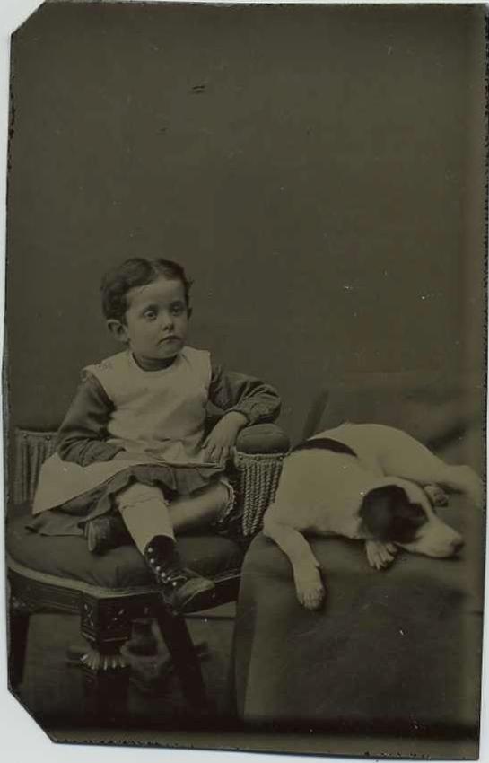 photo-chien-ancienne-30
