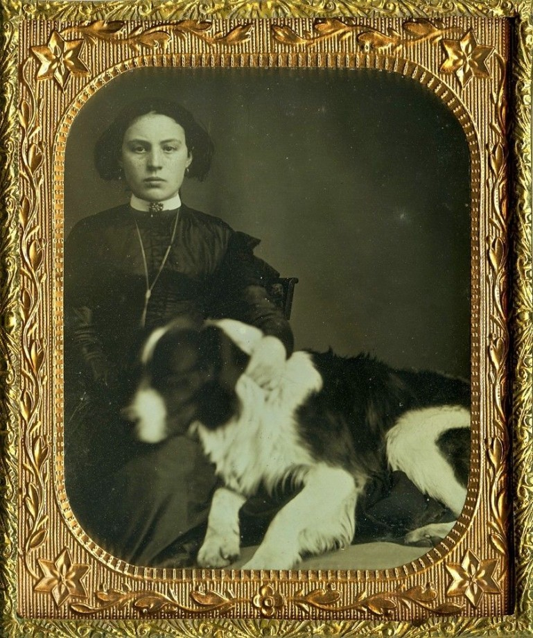 photo-chien-ancienne-37