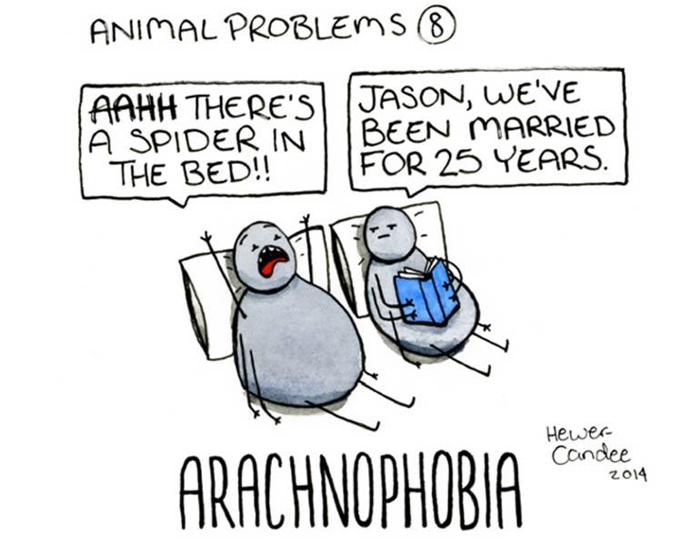 probleme-animal-05