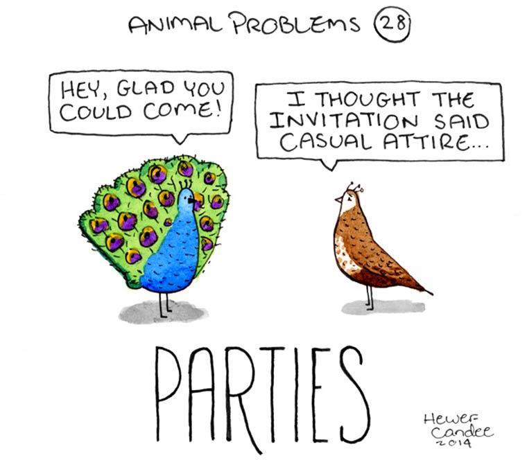 probleme-animal-15